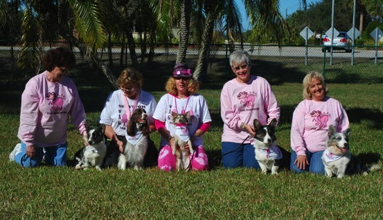 Our 2011 breast cancer 'Wag For Awareness' team.